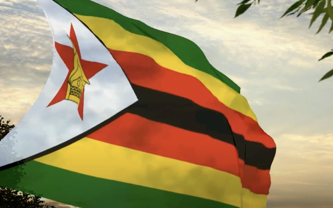 What Zimbabwe Can Teach Investors About Jurisdictional Diversification