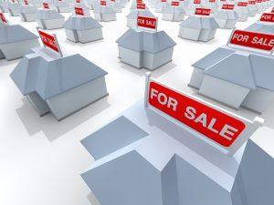 platinum properties investor network
